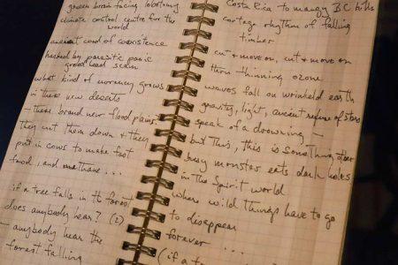 Bruce Cockburn notebook - photo Darren Makowichuk/Postmedia