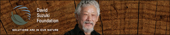 The David Suzuki Foundation